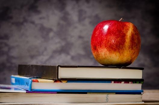 Photo of Vyšší vzdělání, vyšší příjem a lepší sociální postavení?